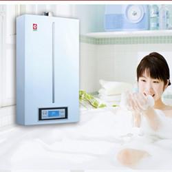 樱花热水器图片